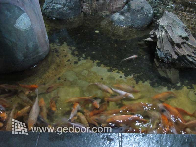 Akuarium Air Tawar Taman Mini Indonesia Indah