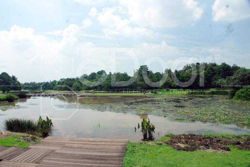 Danau Di Bogor