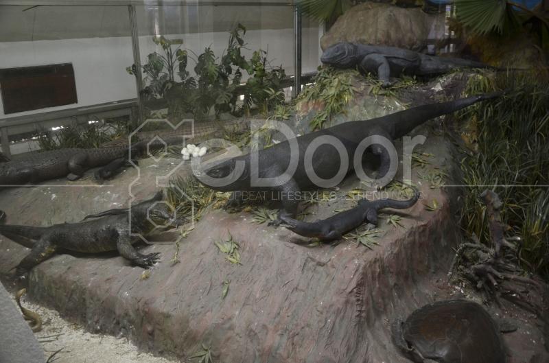 Wisata Museum Komodo TMII
