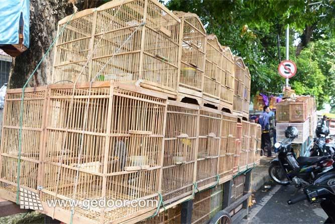 Pasar Burung Kaki Lima TB. Simatupang