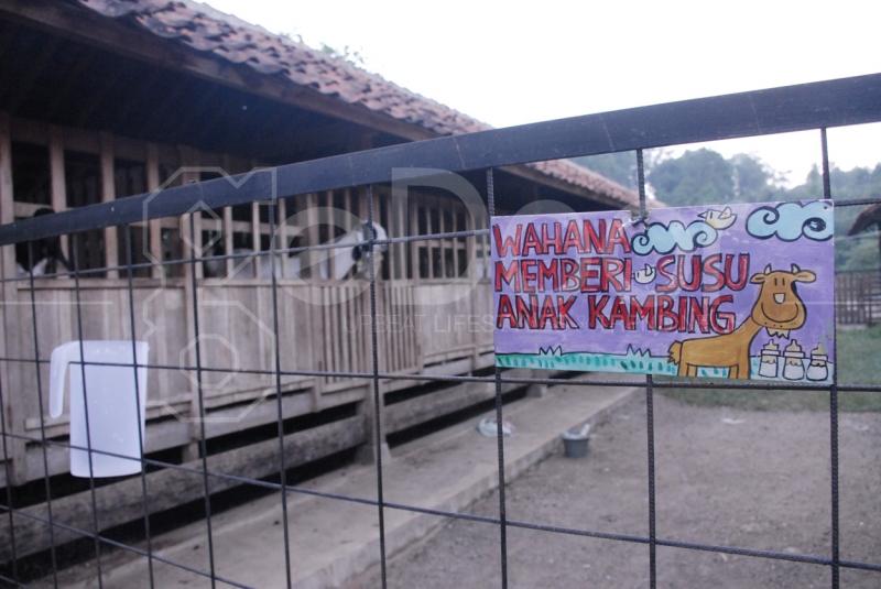 Wisata Murah Dekat Jakarta