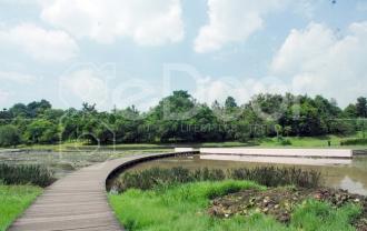 Danau Dora, Tujuan Wisata Edukatif Di Pinggiran Jakarta